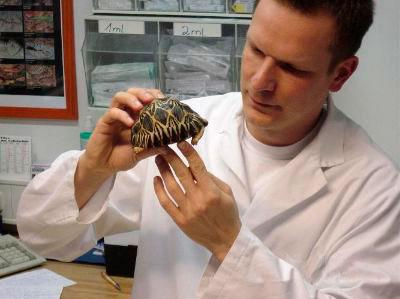 ... Tierarzt Thomas Bauer Reptiliensprechstunde / Tierarzt Thomas Bauer